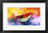 Framed Butterfly III
