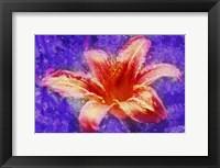 Framed Flower XI