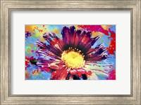 Framed Flower XIII