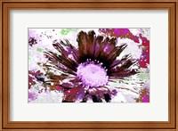 Framed Flower XIV