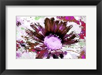 Framed Flower XIV