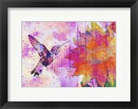 Framed Hummingbird XVII