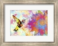 Framed Hummingbird XVIII