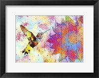 Framed Hummingbird XVIII