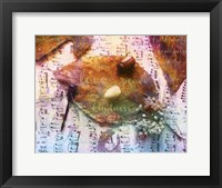 Framed Insects XX
