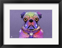 Framed PUG Purple XXXIII