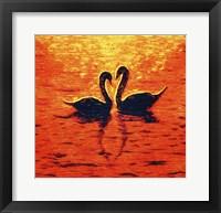 Framed Swan LIV