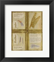 Framed Feather Palm