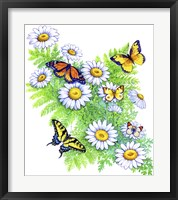 Framed Daisies and Butterflies