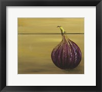 Framed Red Onion on a box