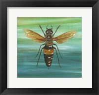 Framed Honey Bee