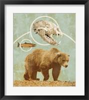 Framed Bear Country