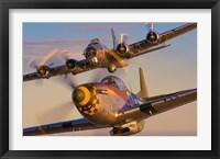 Framed North American P-51D-25-NA 'Mustang' N5428V