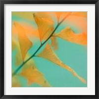 Framed Fern Dance 2