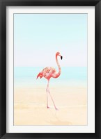 Framed Flamingo on the Beach II