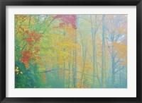 Framed Autumn's Palette