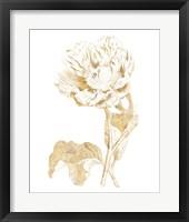 Framed Gilded Botanical VII