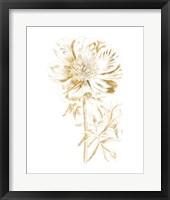 Framed Gilded Botanical VIII