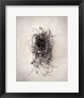 Framed Nest II