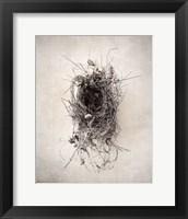 Framed Nest II