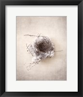Framed Nest III