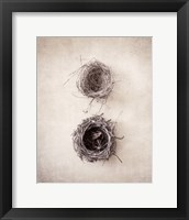 Framed Nest IV