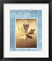 Framed Autumn II