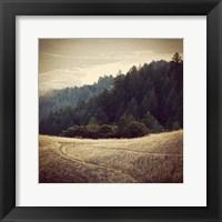 Framed Diverging Paths 2