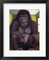 Framed 800 Pound Gorilla