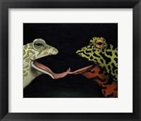 Framed Horny Toads 1