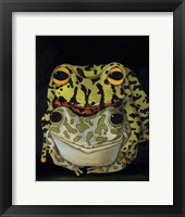 Framed Horny Toads 2
