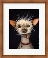 Framed Ugly Dog