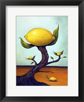 Framed Lemon Tree Surreal