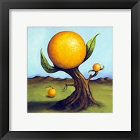 Framed Orange Fruit Tree