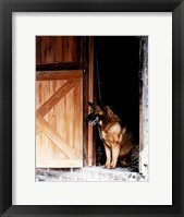 Framed Red Dog's Barn