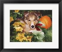 Framed Pumpkin Farmer