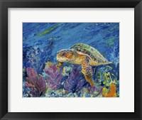 Framed Loggerhead Turtle