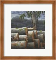 Framed Wounded Nature