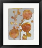 Framed Orange Seed Pods 3