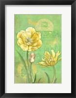 Framed Spring Flowers I