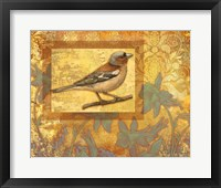 Framed Chaffinch On Golden Background