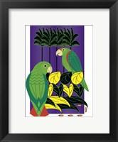 Framed Parrots
