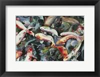Framed Dancing Fish