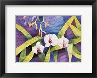 Framed Water Orchids