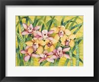 Framed Winter Orchids