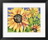 Framed Magic Sunflowers