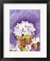 Framed Moonflower