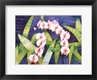 Framed Sacred Orchids