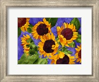 Framed New Mexico Sunflowers