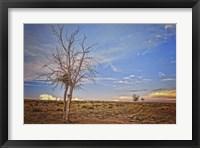 Framed Wyoming High Desert Beauty